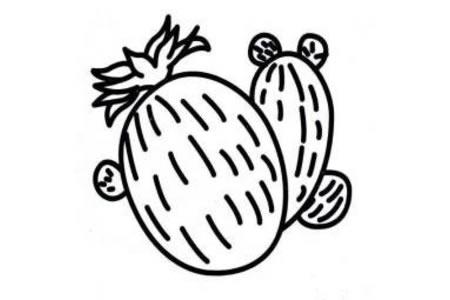 植物简笔画大全 仙人球简笔画图片