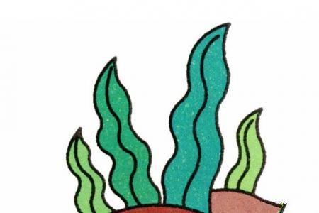 水草的画法