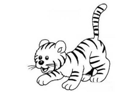 4张可爱的小老虎简笔画