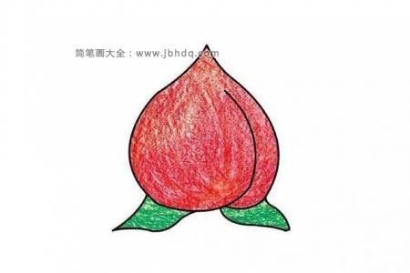 桃子的简单画法