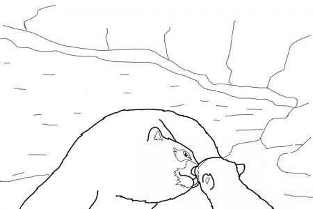 北极熊宝宝和妈妈