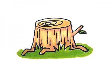树桩怎么画