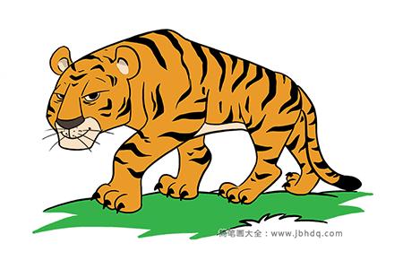 漂亮的老虎简笔画图片