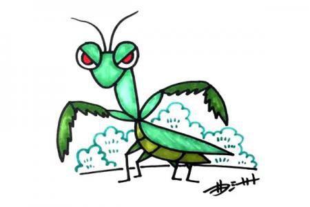 卡通螳螂怎么画