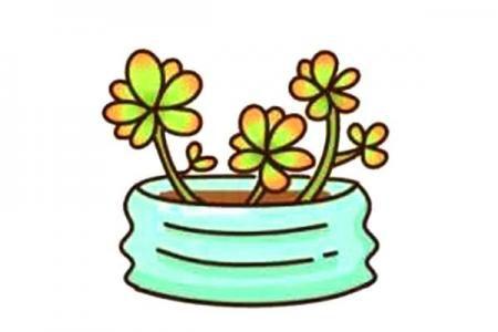 漂亮的多肉植物简笔画11