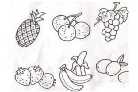 水果六类简笔画