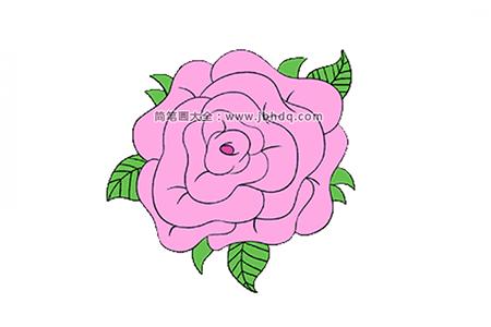 三张漂亮的玫瑰花简笔画