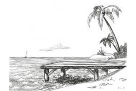 小学生简单的椰子树简笔画图片
