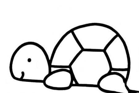 卡通小乌龟怎么画