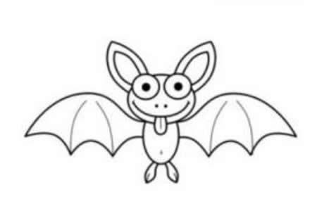 飞翔的蝙蝠