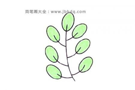 树叶的简单画法