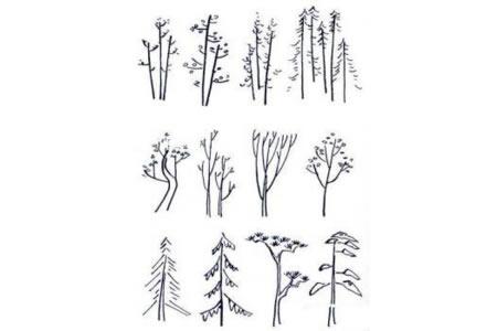 几种大树的简易画法