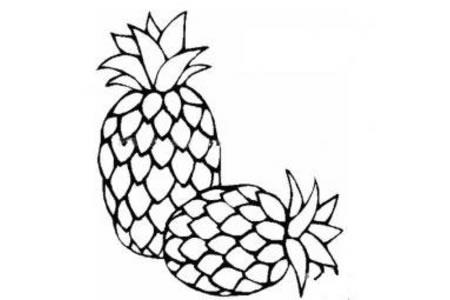 美味的菠萝简笔画图片