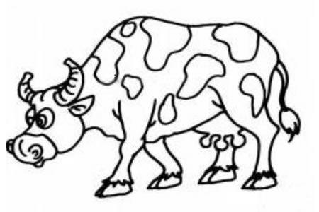 吃草的奶牛简笔画图片