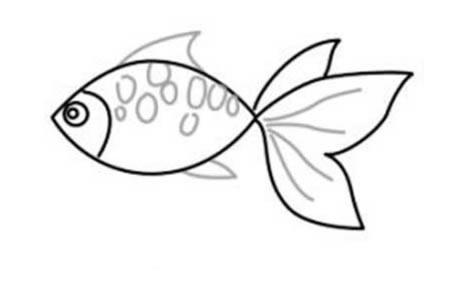 如何画小金鱼