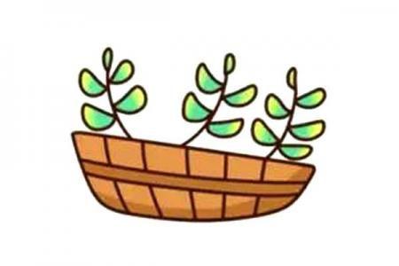 漂亮的多肉植物简笔画2
