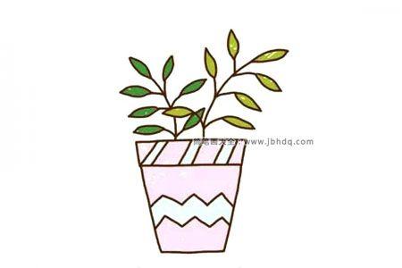 花店里漂亮的盆栽