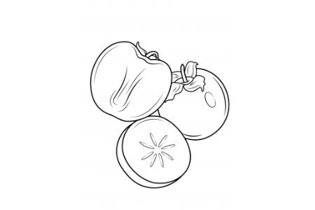 简单的柿子简笔画