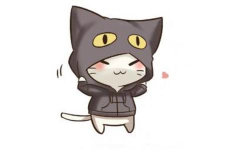 戴帽子的小猫简笔画