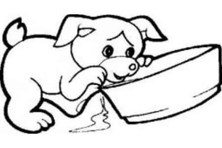 小狗吃食的简笔画