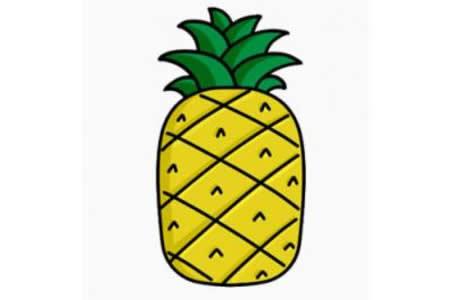 菠萝简笔画画法