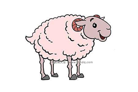 一步一步学画绵羊