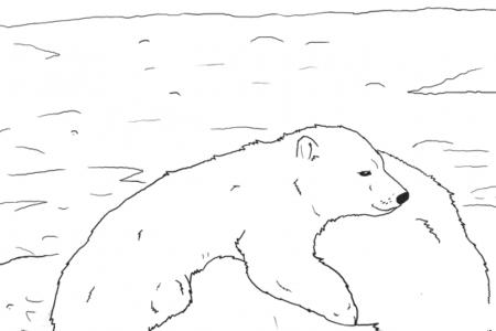 悠闲的北极熊母子