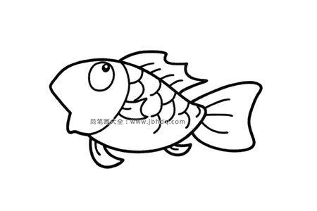 简笔画图片漂亮的金鱼