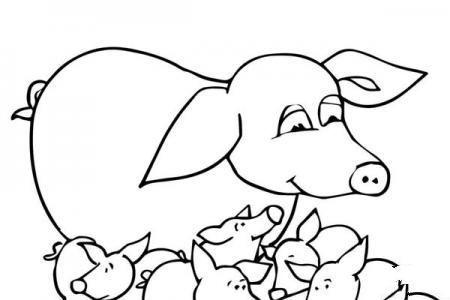 小猪们和它们的妈妈
