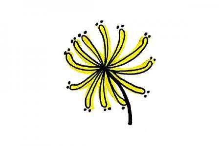 简单漂亮的彩色菊花
