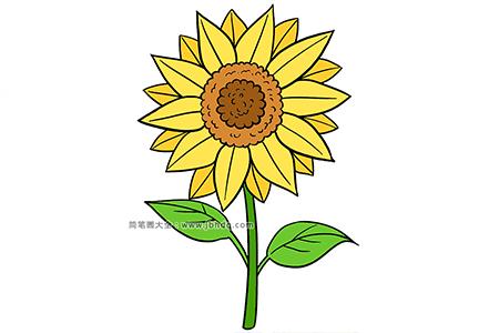 儿童学画向日葵简笔画