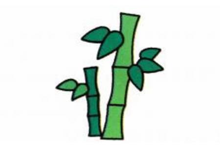 竹子简笔画画法