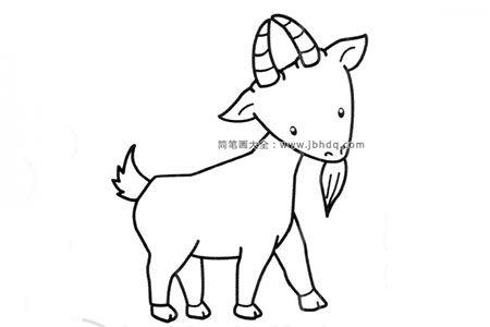 可爱的小山羊简笔画图片