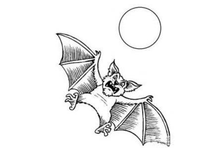 万圣节的蝙蝠简笔画