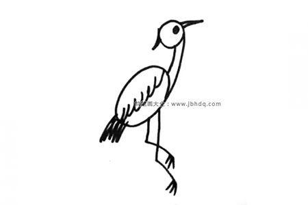 丹顶鹤简单的画法