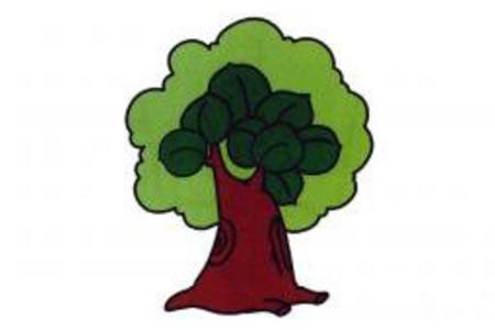 简笔画图片大树