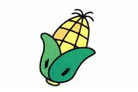 玉米简笔画画法