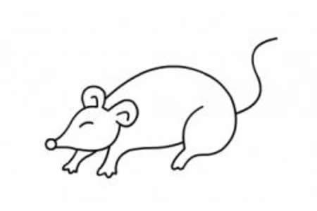 生动的老鼠简笔画