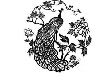 孔雀和花简笔画图片