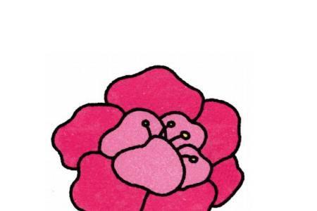 幼儿简笔画 牡丹花的画法