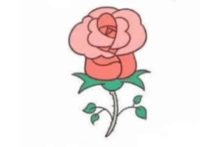 玫瑰花简笔画教程