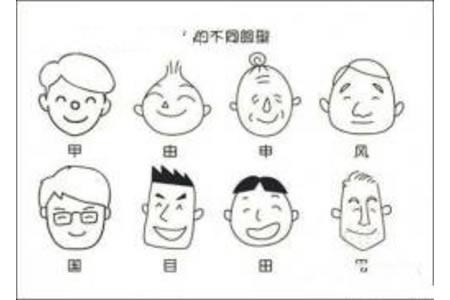 人的不同脸型