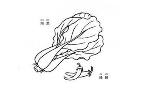 白菜和辣椒简笔画图片