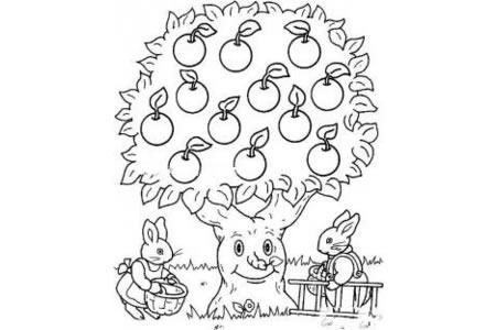 苹果树和兔子