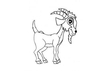 动物简笔画大全 山羊简笔画