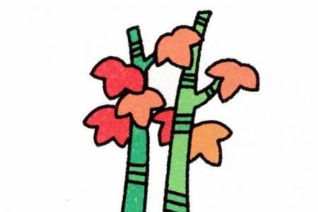 枫树的画法