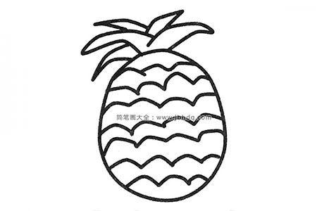 五张漂亮的菠萝简笔画图片