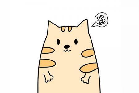 各种装扮的可爱小猫