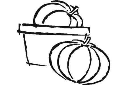 菜篮里的南瓜