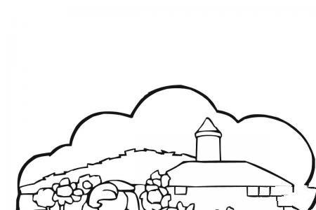 农村景观向日葵